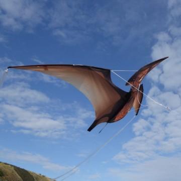 Cerf-volant Ptérodactyle