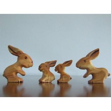 Famille lapin