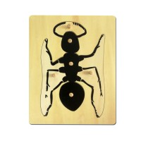 Puzzle de la fourmi