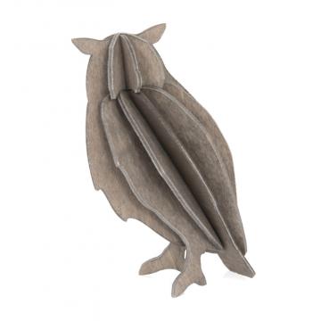 Hibou gris