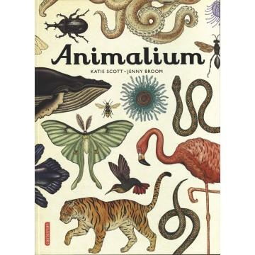 Animalium de Katie Scott et Jenny Broom