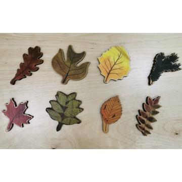 Puzzle des feuilles