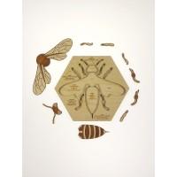 Puzzle de l'abeille
