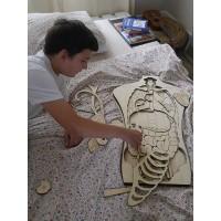 Puzzle géant du corps humain