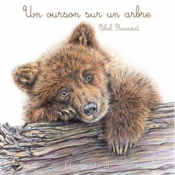 Un ourson sur un arbre - Ethel Ravidat