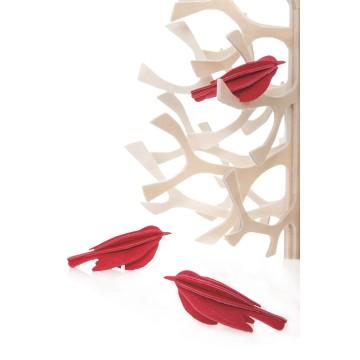 3 petits oiseaux rouge vif