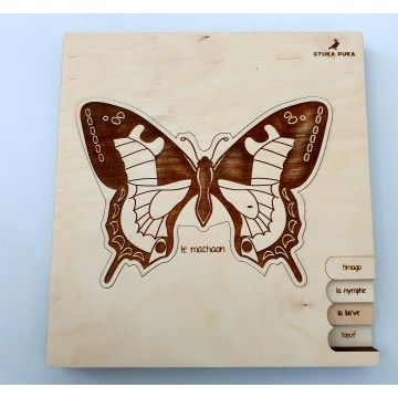 """Puzzle """"Cycle de vie du papillon"""""""