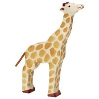 Girafe, tête haute