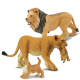 Famille des lions
