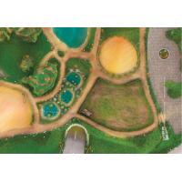 """Tapis de jeu """"Royaume des animaux"""" 90x60 cm"""