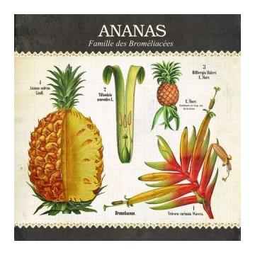 """Carte """"Ananas"""""""