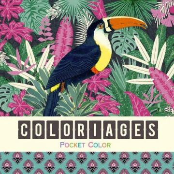 Coloriages - Les oiseaux