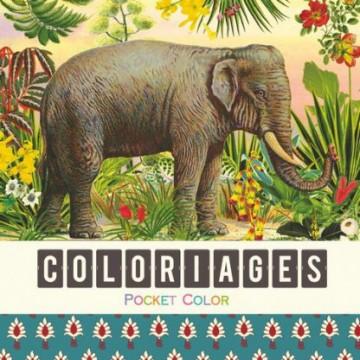 Coloriages - Les animaux