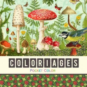 Coloriages - Les champignons