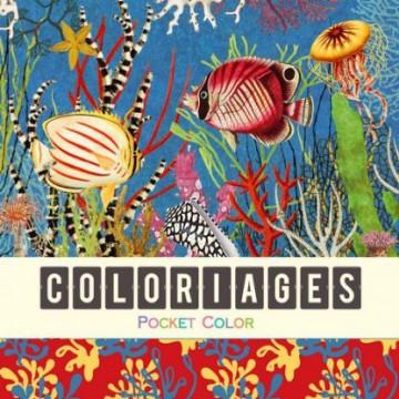 Coloriages - océan