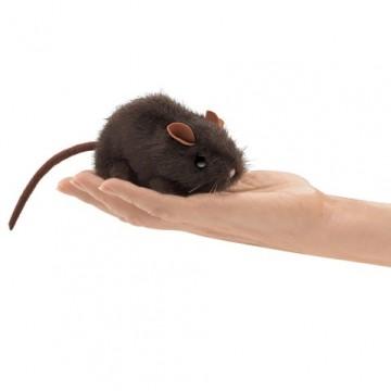 Petite souris brune