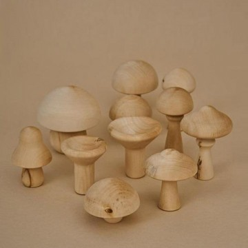 Champignons-bois naturel