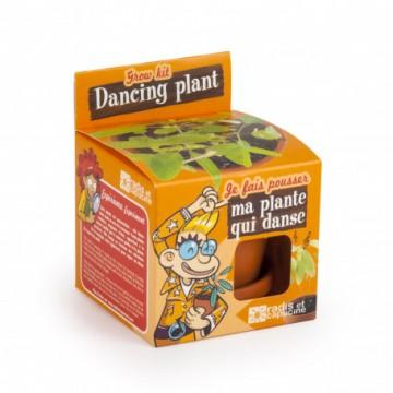 Ma plante qui danse : graines à semer