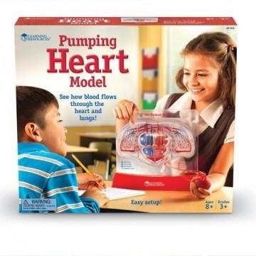 Pompe cardiaque