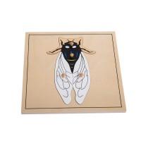 Puzzle de la mouche