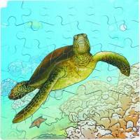 Puzzle cycle de vie de la tortue