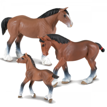 Famille des chevaux