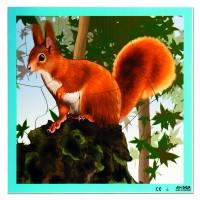 Puzzle de l'écureuil