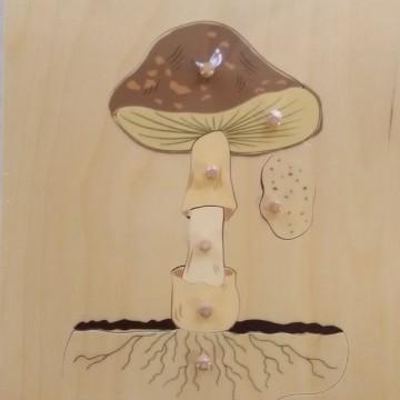 Puzzle du champignon